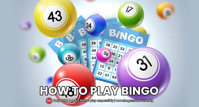 How to Play Bingo UK