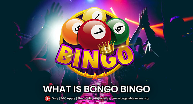 What is Bongo's Bingo?